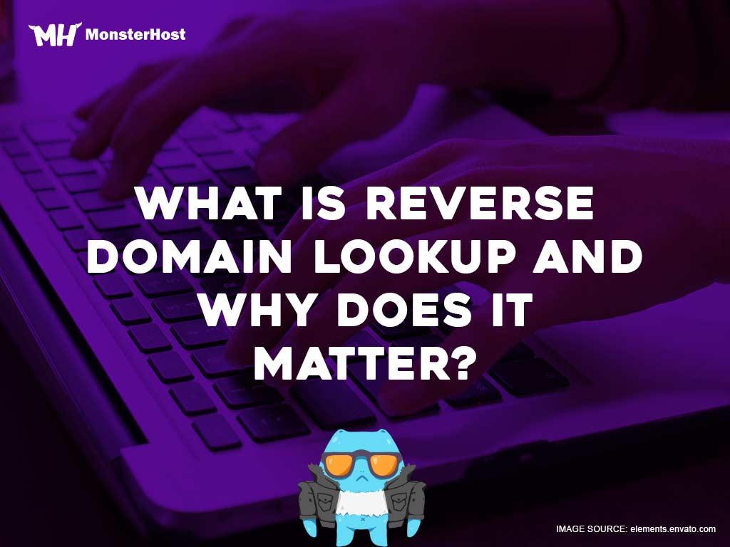 Reverse domain lookup